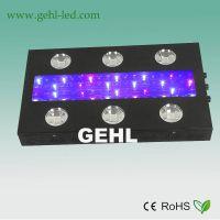 dimmable COB 900W LED grow light