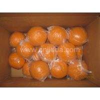 80mm Concrete Pump Pipe Parts Cleaning Ball thumbnail image