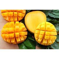Incredible Benefits of Mangoes, The King of Fruits/ VIETNAM MANGOES thumbnail image