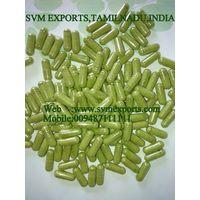 Organic Moringa Leaf Powder Capsules Exporters