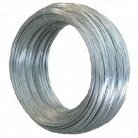 Fctory Stainless Steel/Galvanized Steel Wire Rope 6X24+7FC thumbnail image