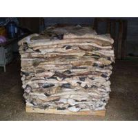 Dry and Wet Salted Donkey Hides