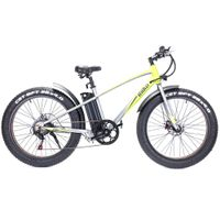 China Freego 36v 350w folding 26inch fat tire electric mountain bike with gear