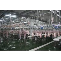 broiler chicken poultry farm slaughtering equipment