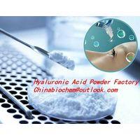 Hyaluronic Acid/ Sodium Hyaluronate (Eye-Drop Grade) thumbnail image