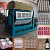 haichuan automatic large egg tray machine HC5008
