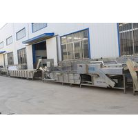 Tomato Drying Machine in Fruit And Vegetable Drying Production Line