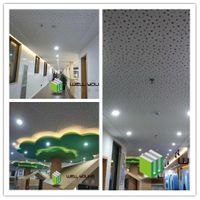 Perforated Sound Absorption Gypsum Ceiling Board