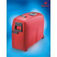 PP Luggage Visage