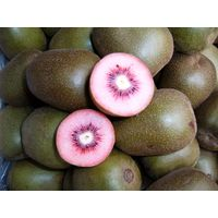Red Kiwi fruit
