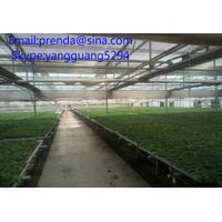 greenhouse benches systems ,accessories of benches systems,hight quality low price