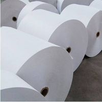 Saturated Thermal sublimation printing paper ink