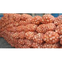 Fresh Onion, Yellow Onion, Red onion At cheap Price