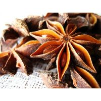 PREMIUM STAR ANISE WITHOUT STEM - BEST PRICE