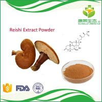 Promotion Price Reishi Mushroom Extract Powder