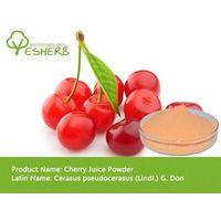spray dried organic cherry powder thumbnail image