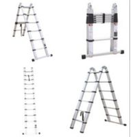Telescopic Ladder thumbnail image