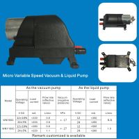 Micro Variable Speed Vacuum & Liquid Pump