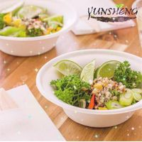 White Disposable Compostable Sugarcane Bagasse Pulp Paper Soup Bowl with Round Bottom thumbnail image