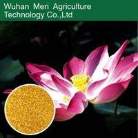 High phosphorus formula npk 9-45-15 water soluble fertilizer for root/plant/flower
