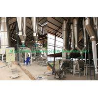 Cassava flour drying process