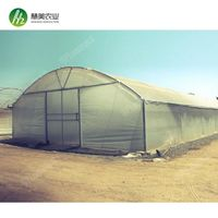 2018 New design vegetable fruits flowers large galvanized frame greenhouse tunnel thumbnail image