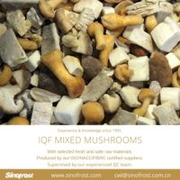 IQF Mixed Mushrooms/Frozen Mixed Mushrooms thumbnail image
