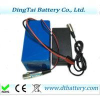 500w 750w Li-ion 48V 11.6Ah panason ic 2900mah pack with charger
