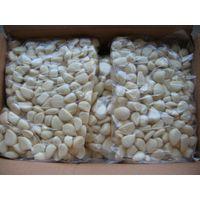 supply frozen garlic cloves, frozen garlic dices, frozen garlic paste thumbnail image