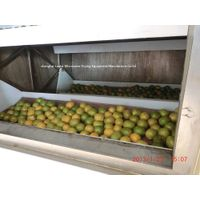 LANTAI Microwave fruit and vegetable slices dry machine