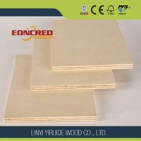 Maple plywood