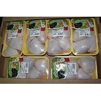 Frozen Halal Chicken (whole and parts)
