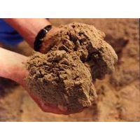 fishmeal thumbnail image