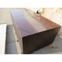 CROWNPLEX brand film faced plywood,poplar core.Brown film faced Plywood