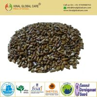 Best Quality Cassia Tora Seeds
