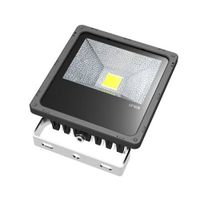 30W Max. LED Floodlight, Floodlight, LED Flood Light, Flood Light, Floodlights, LED Projector lamp,