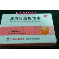 human chorionic gonadotropin HCG with water 5000iu thumbnail image