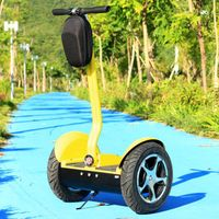 Two wheel self balancing 2 wheel electrical scooters