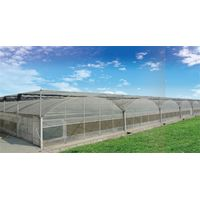 Commercial Agricultural Arched Multi span Greenhouse film greenhouse thumbnail image