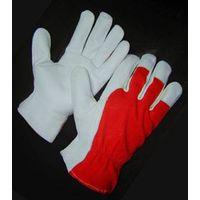 Leather Glove thumbnail image