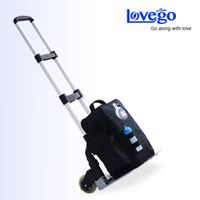 Hospital use medical oxygen concentrator LoveGo LG102 for COPDs/Ashama/Pulmonary Hypertension/ good