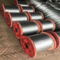 BS Galvanized Steel Strand for Sale thumbnail image