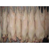 Halal frozen sheep carcass
