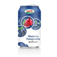 Sweet Blueberry Pomegranate Juice