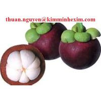 Frozen Mangosteen fruit juice concentrate