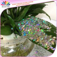 hexagon holographic glitter