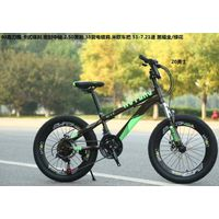 steel material 2.5 tire 20 inch mountain bike thumbnail image