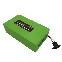 48V 15Ah Electric Bike Battery Pack