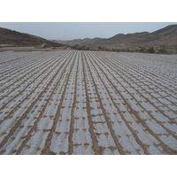 anti-UV weed control PE mulch film