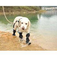 100% waterproof dog boots